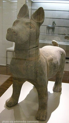 chinese chongqing dog statue in a museum