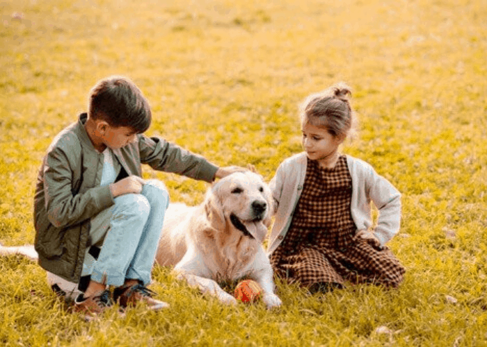 2 kids patting a Golden retriever in the park
