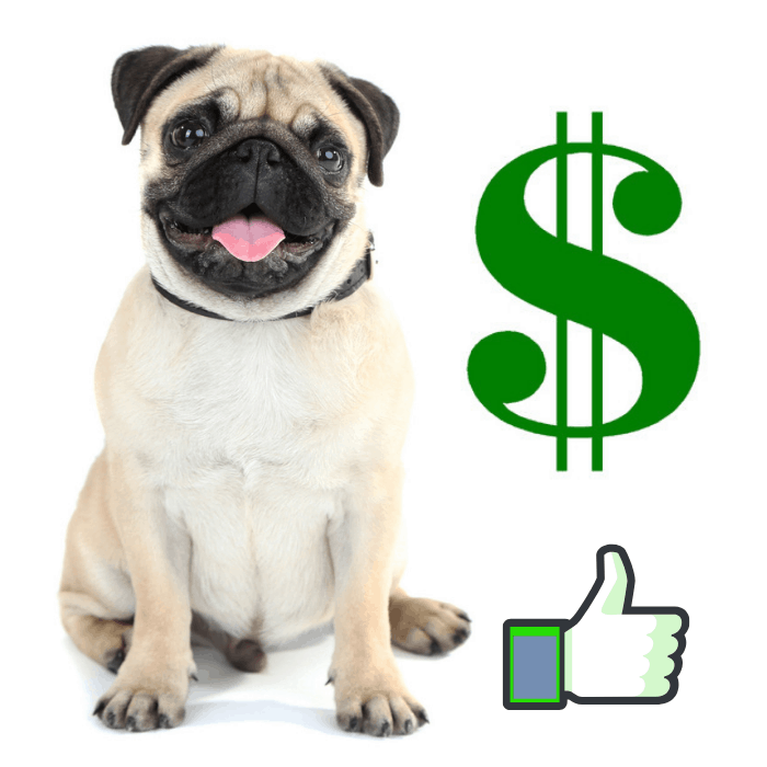 A pug, green dollar and thumb up sign