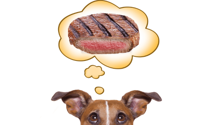Can dogs eat rare steak image