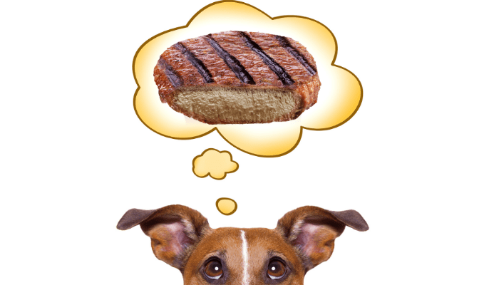 Can dogs eat well-done steak image