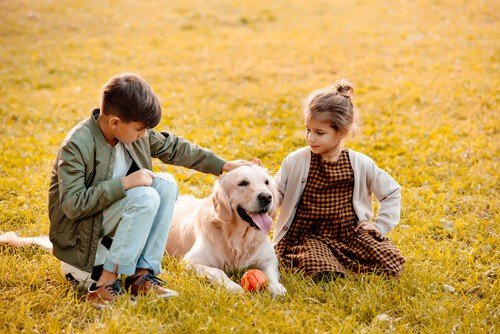 Children petting a golden retriever in a park