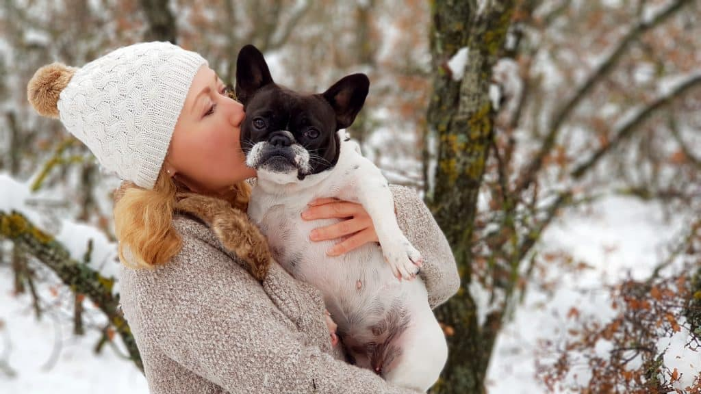 Girl kissing a french bulldog in the snow