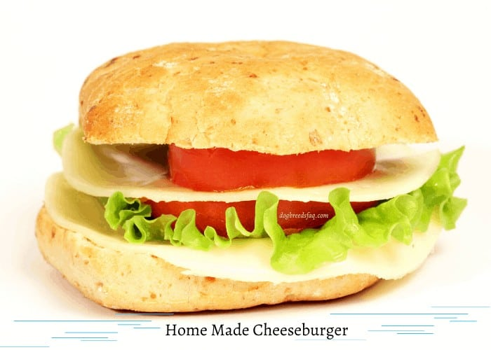 Home made cheeseburger on white background