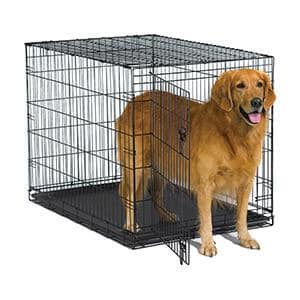 dog going out of a single door dog crate