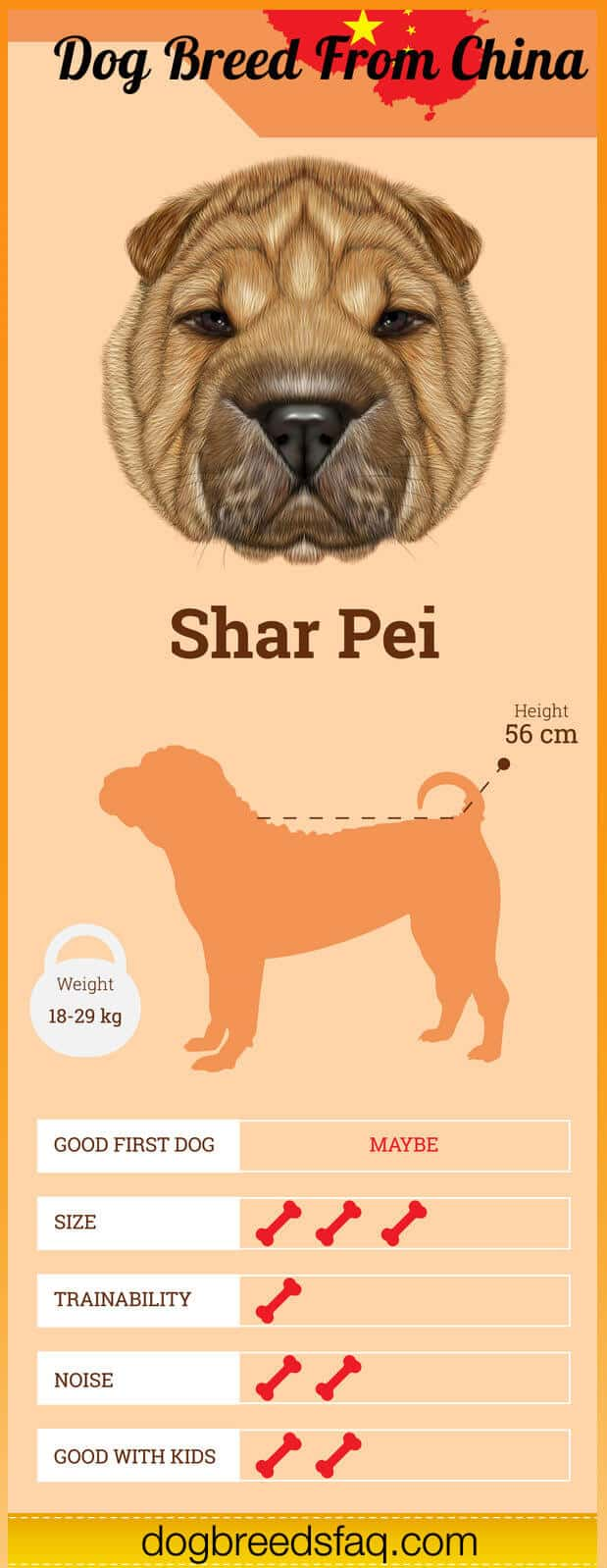 Shar Pei Dog Breed Infographic