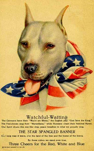 WW1 poster featuring a pit_bull