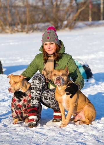 a girl and 2 pit bulls in the snow