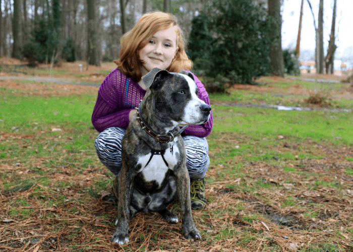 beautiful pit bull terrier with a girl at the park