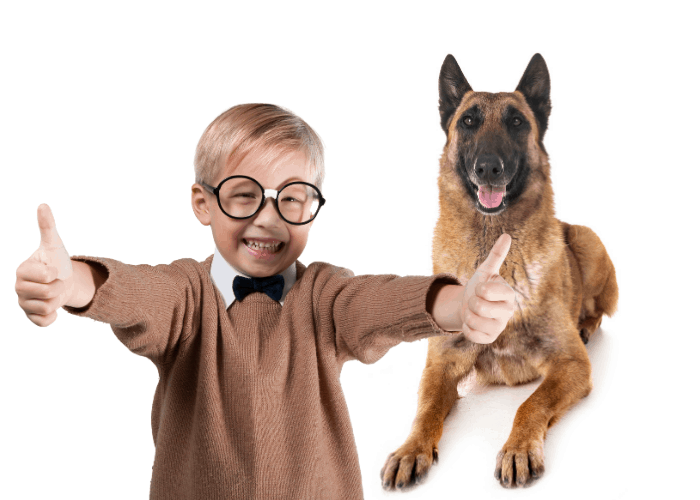 _belgian malinois with a boy doing 2 thumbs up