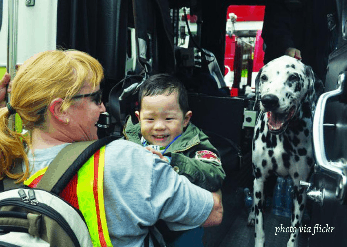 dalmatian mascot at a fire department in the USA
