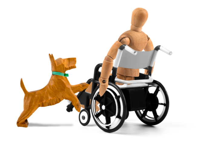disabled person and a service dog mannequin