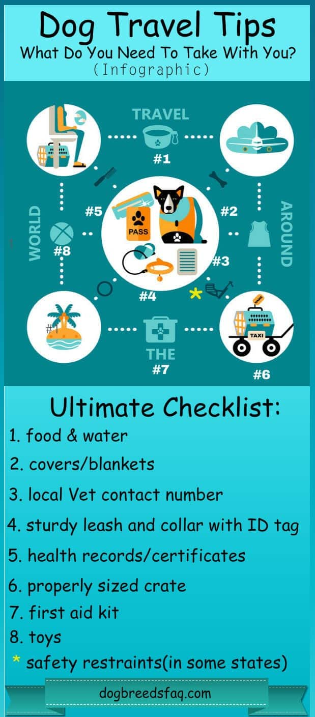Traveling with a dog checklist infographic