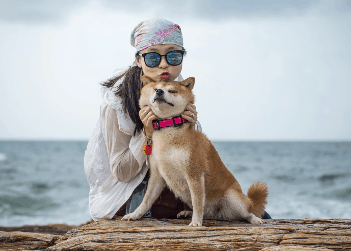 girl and shiba inu on the beach
