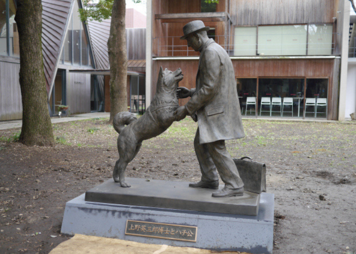 hachiko and his master statue image
