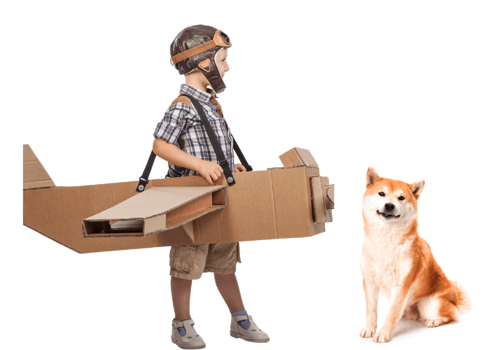 kid in a cardboard plane walking towards the shiba inu