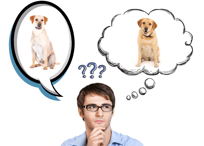 man with eyeglasses thinking about male vs. female labrador pros and cons