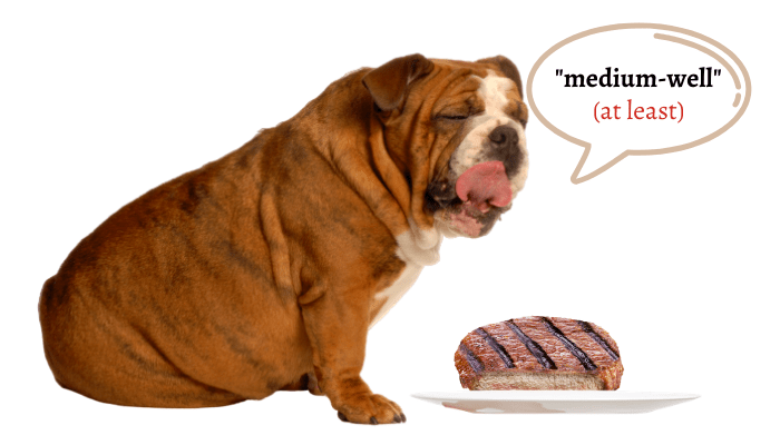 medium-well steak for dogs