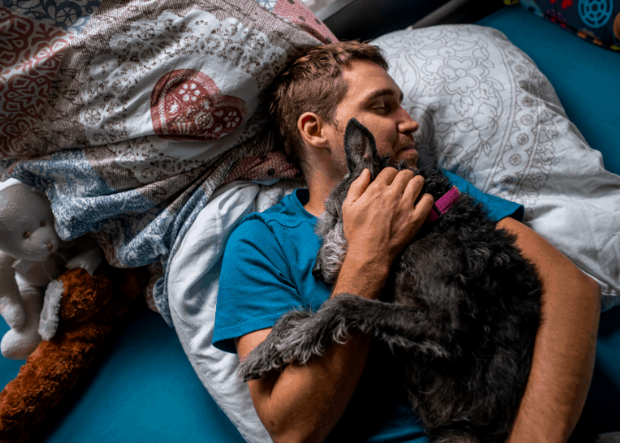terrier dog snuggling with owner in bed