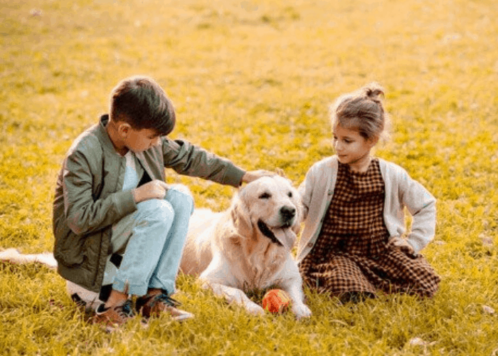 two kids patting a golden retriever