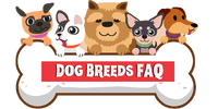 Dog Breeds FAQ header image