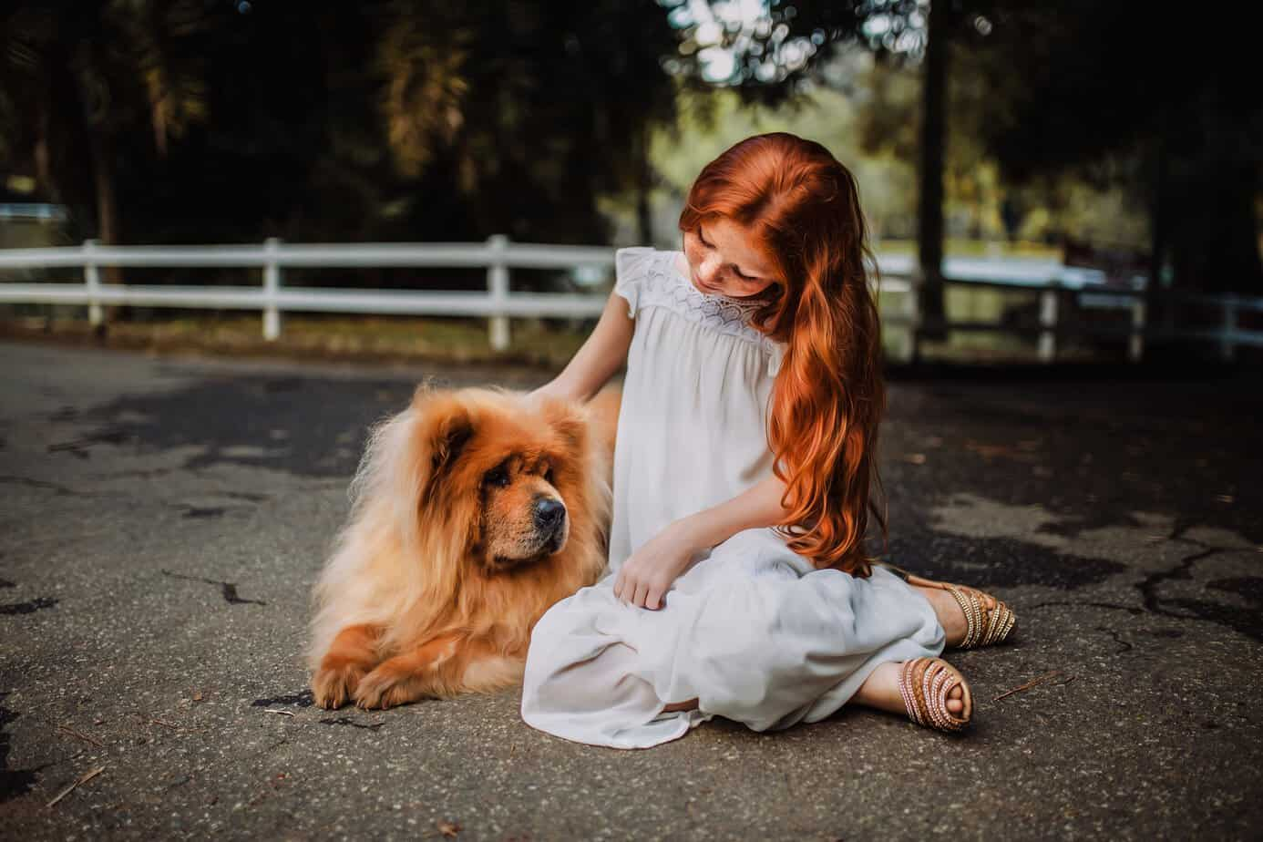 young girl Sitting Beside Chow Chow on Gray Concrete